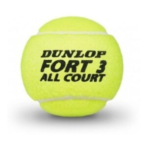 Dunlop Fort All Court X 4